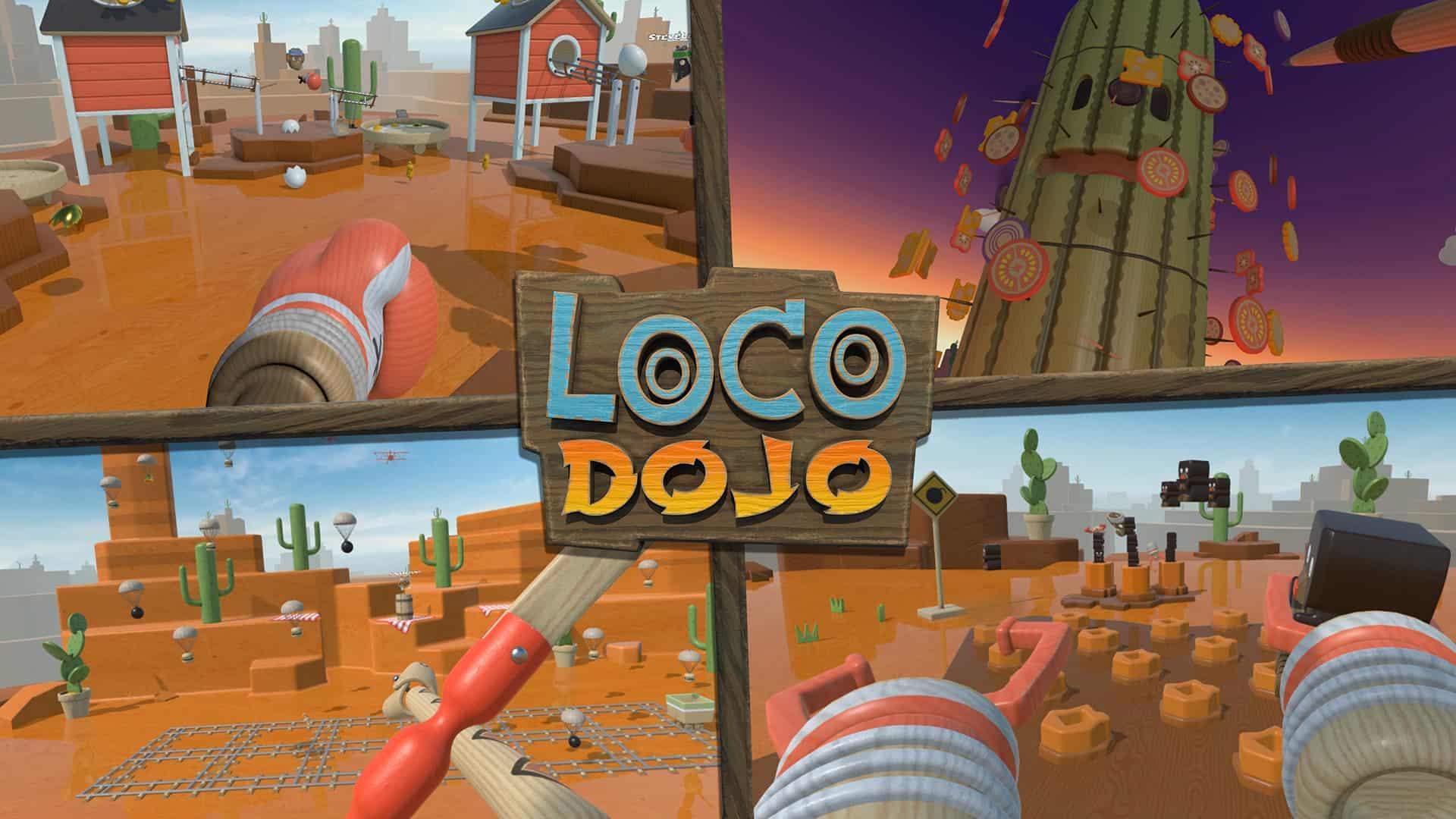 loco-dojo-4